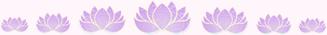 lotusRow